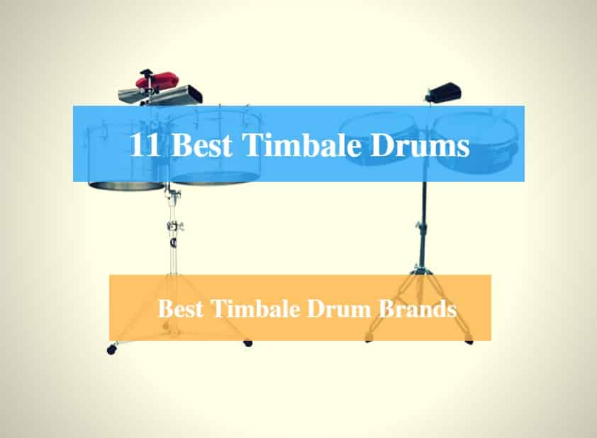 Best Timbale Drum & Best Timbale Drum Brands