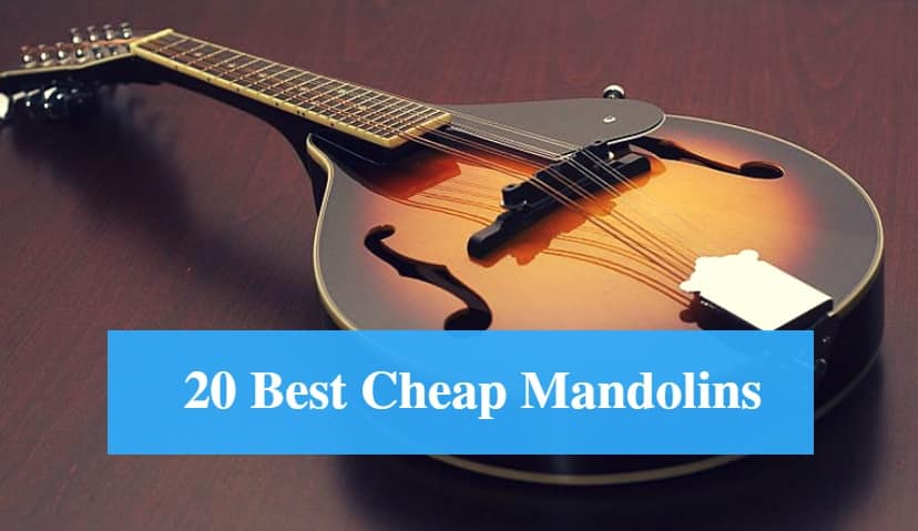 Best Cheap Mandolin & Best Budget Mandolin