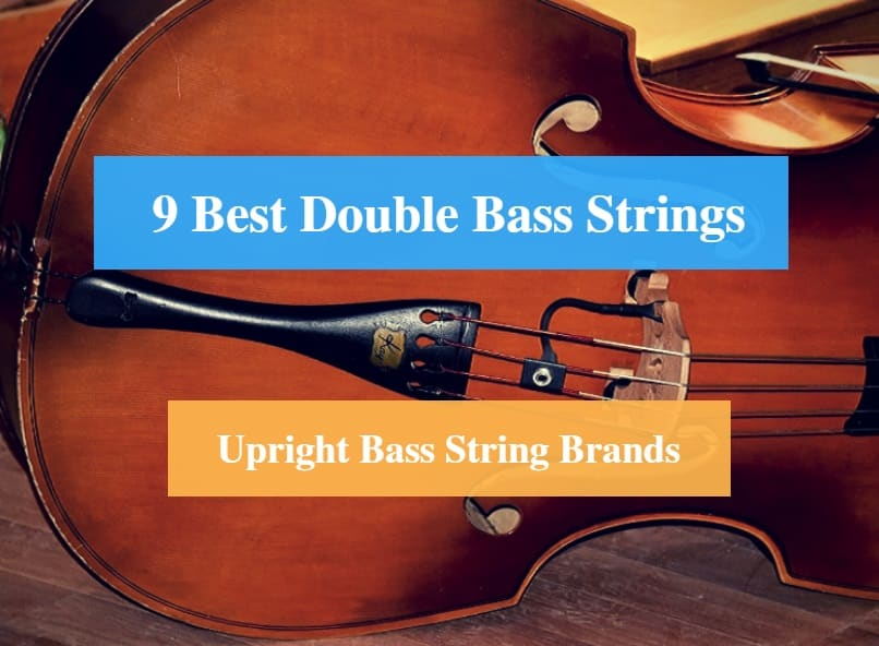 Best Double Bass Strings, Best String for Double Bass & Best Upright Bass String Brands