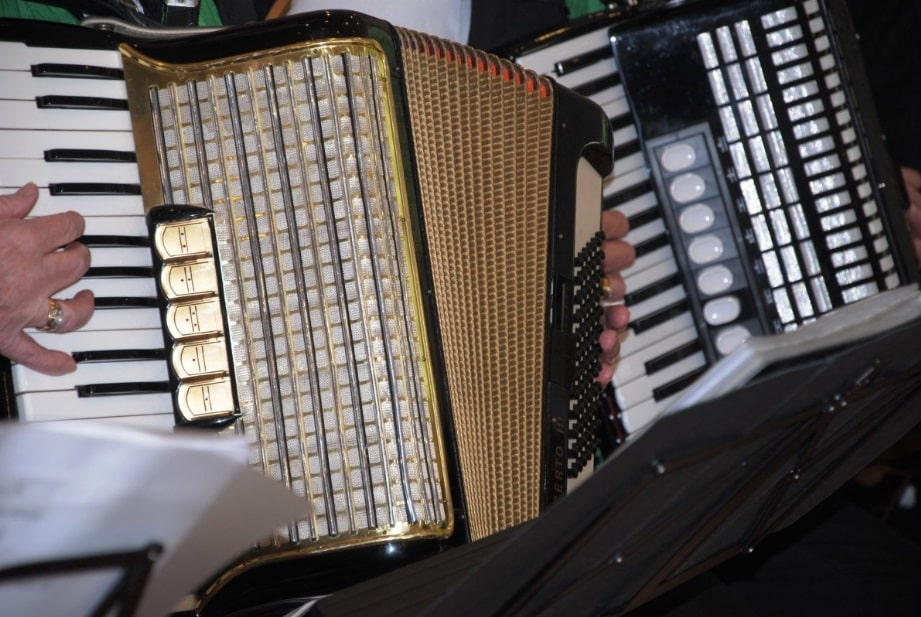 10 Famous Accordion Players and their Accordion Performance (Great