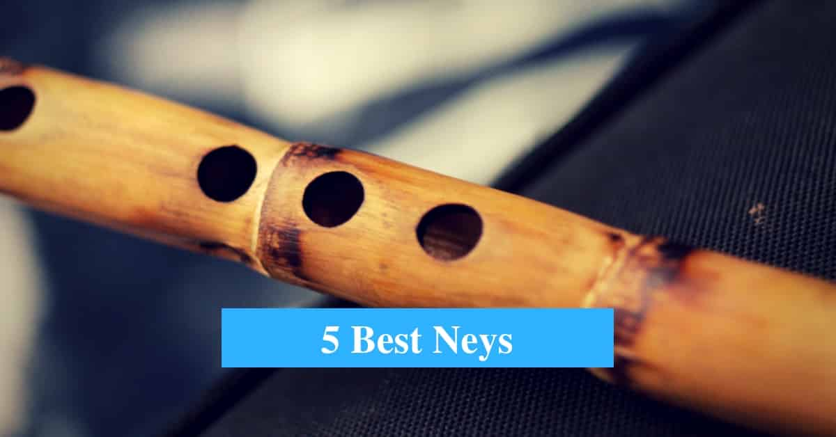 5 Best Ney Flute Reviews 2019 (Turkish and Persian Ney Flute