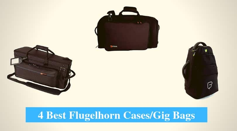 Best Flugelhorn Cases and Gig Bags