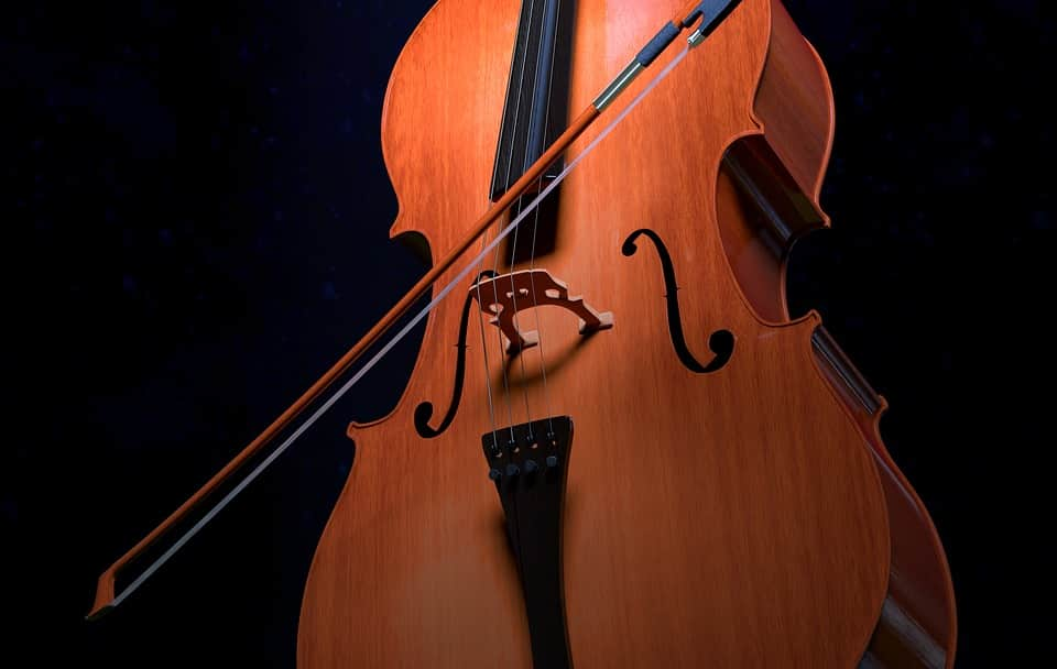 Reasons Learn to Play the Cello