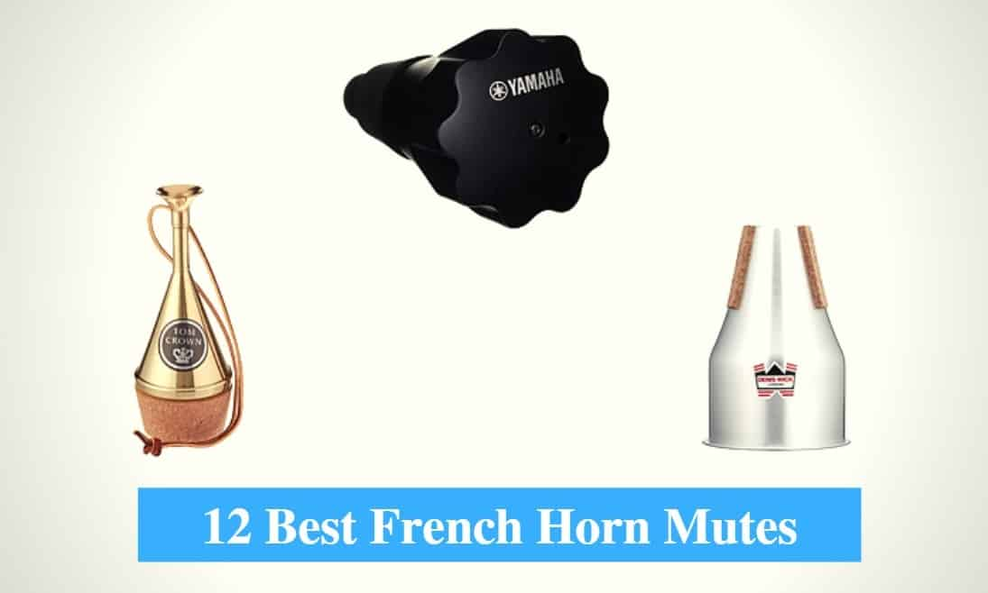 Best French Horn Mute & Best Practice Mute For French Horn