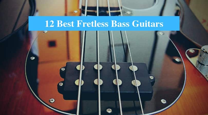 Best Fretless Bass Guitars & Best Brands for Fretless Bass Guitar