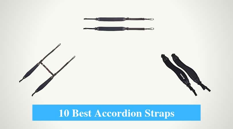 Best Accordion Straps, Accordion Shoulder & Back Straps