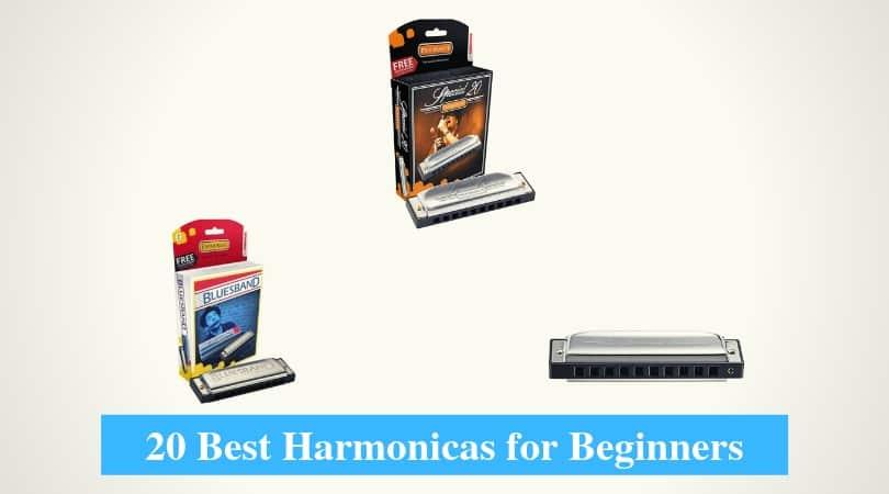 Best Harmonicas for Beginners & Best Beginner Harmonica Brands