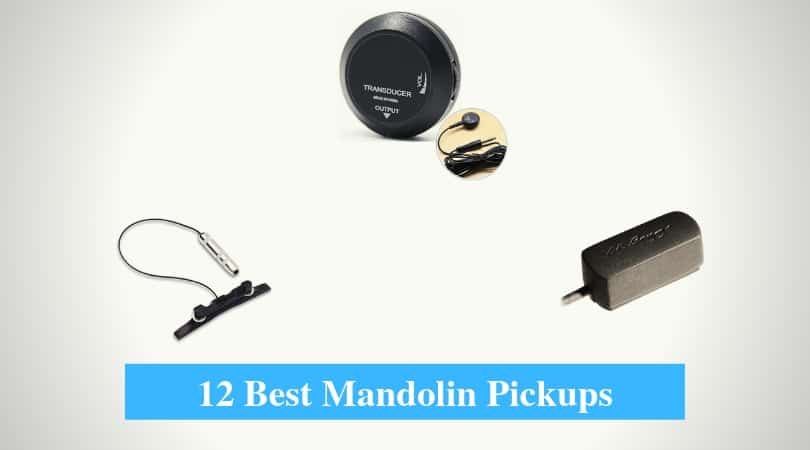 Best Mandolin Pickups, Best Pickup Brands for Mandolin