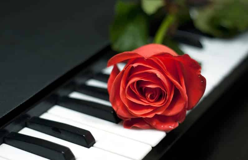 Soft and Relax Piano Music