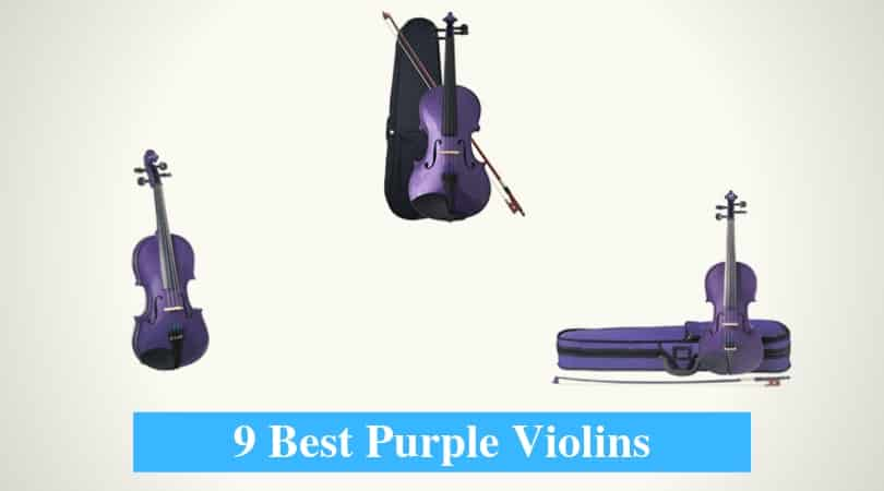 Best Purple Violins