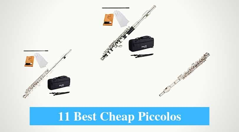 Best Cheap Piccolo & Best Budget Piccolo