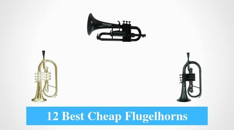 Best Cheap Flugelhorn & Best Budget Flugelhorn