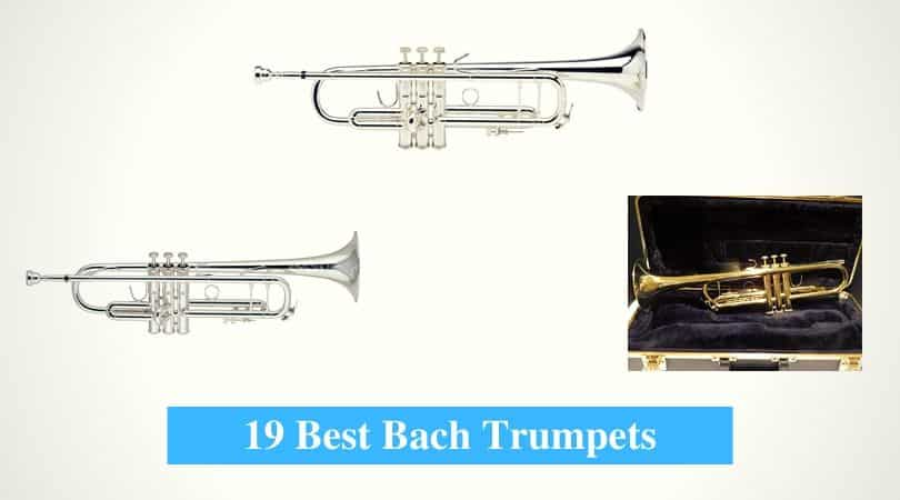 Medium Bore Standard Bach Stradivarius Bb Trumpet 2nd Valve Slide Lacquer