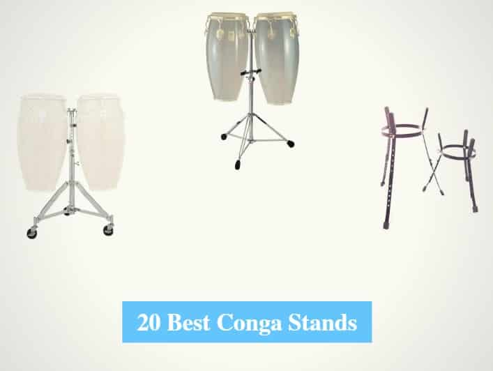 Best Conga Stands