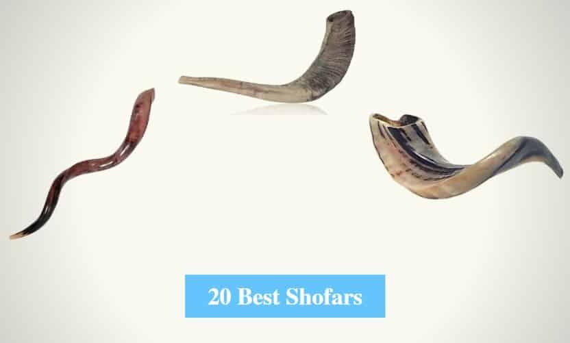 Best Shofars