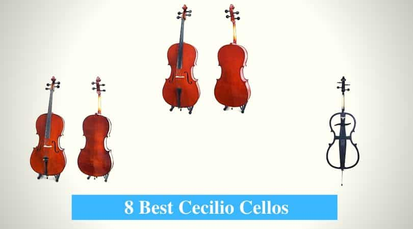 Best Cecilio Cellos