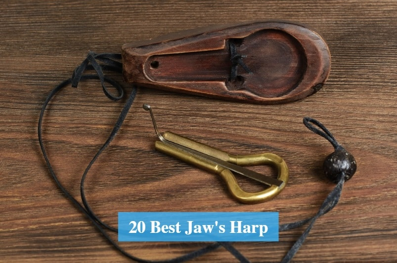 Best Jaw's Harp