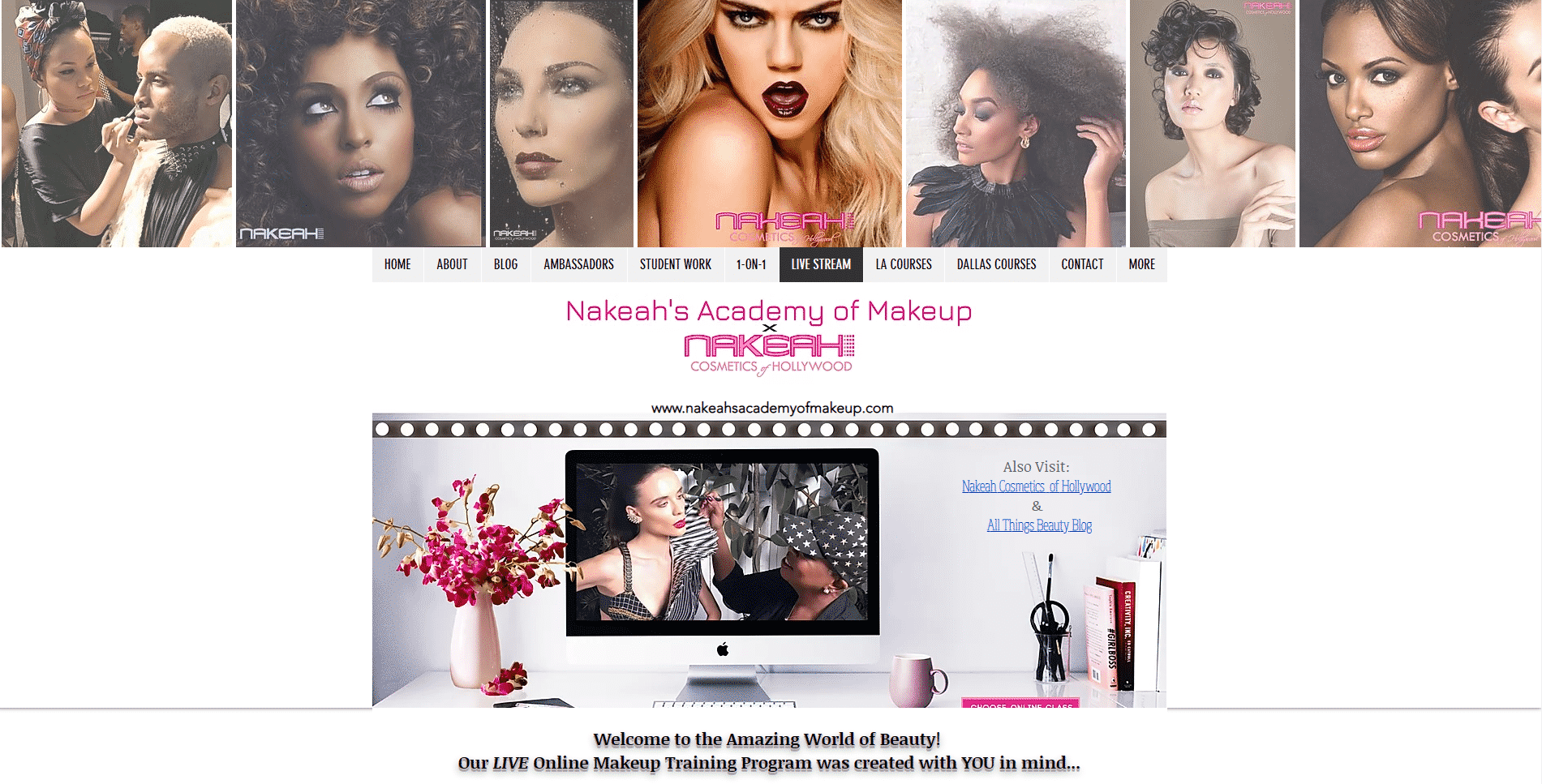 Nakeah Academy of Makeup Learn Makeup and Beauty Lessons Online