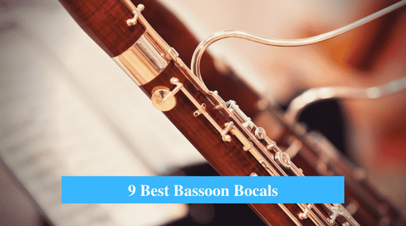 Best Bassoon Bocals