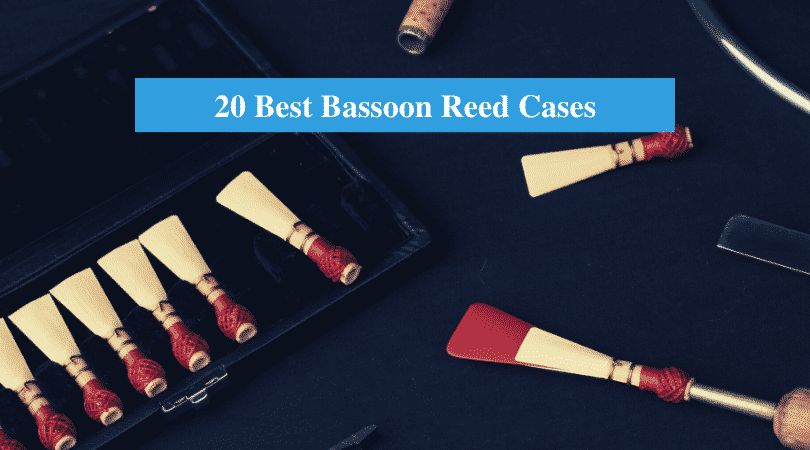 Best Bassoon Reed Cases