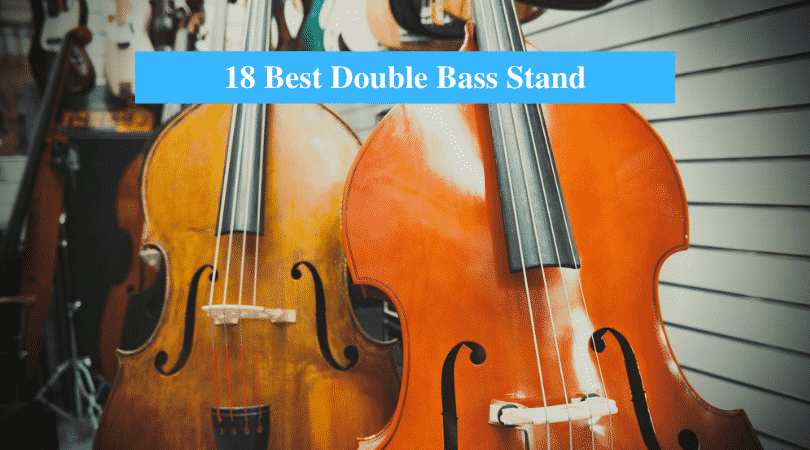 Best Double Bass Stand