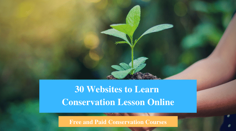 Learn Conservation Lesson Online