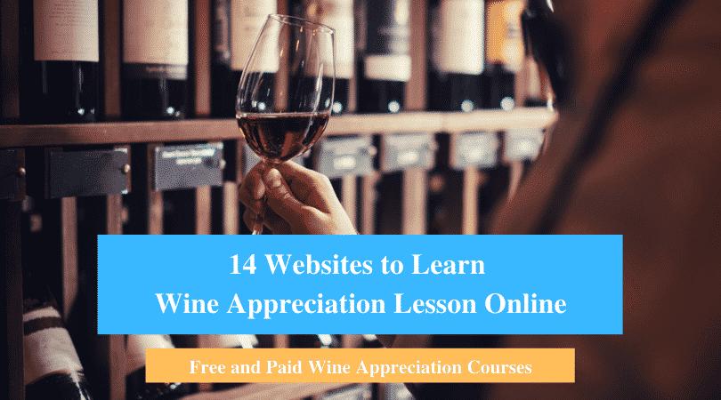 Learn Wine Appreciation Lesson Online