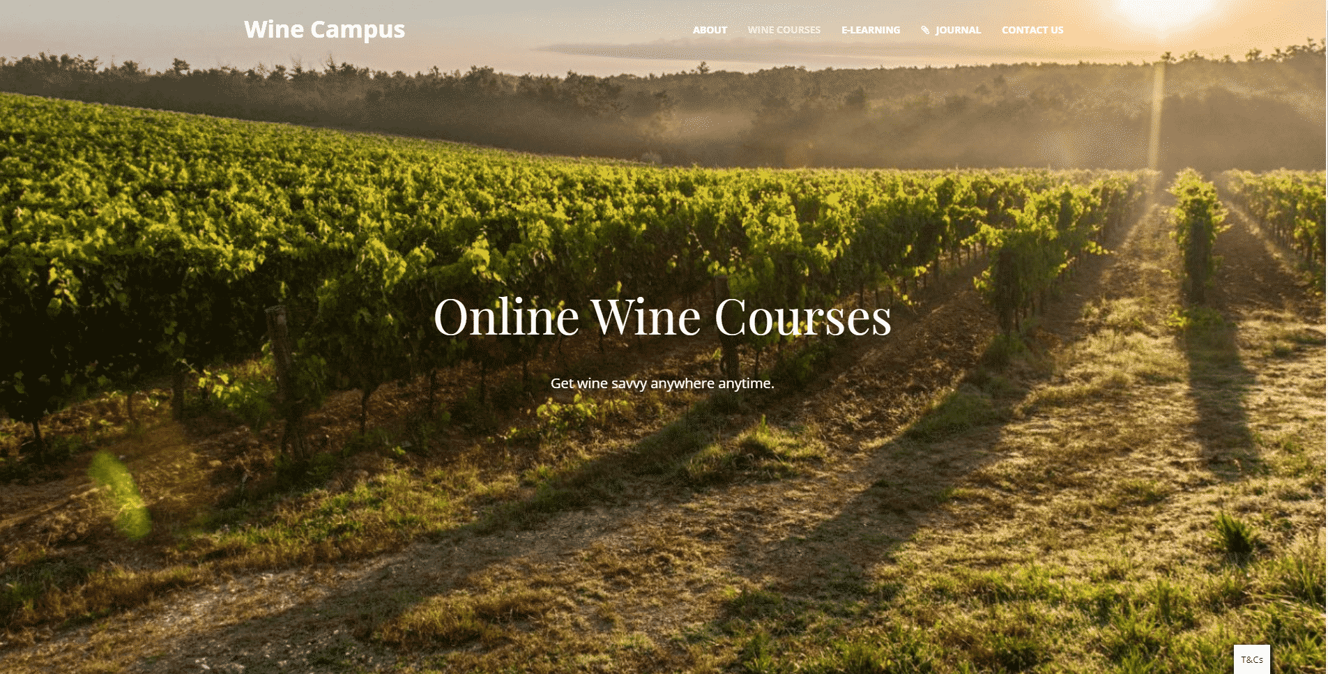 Wine Campus Learn Wine Appreciation Lessons Online
