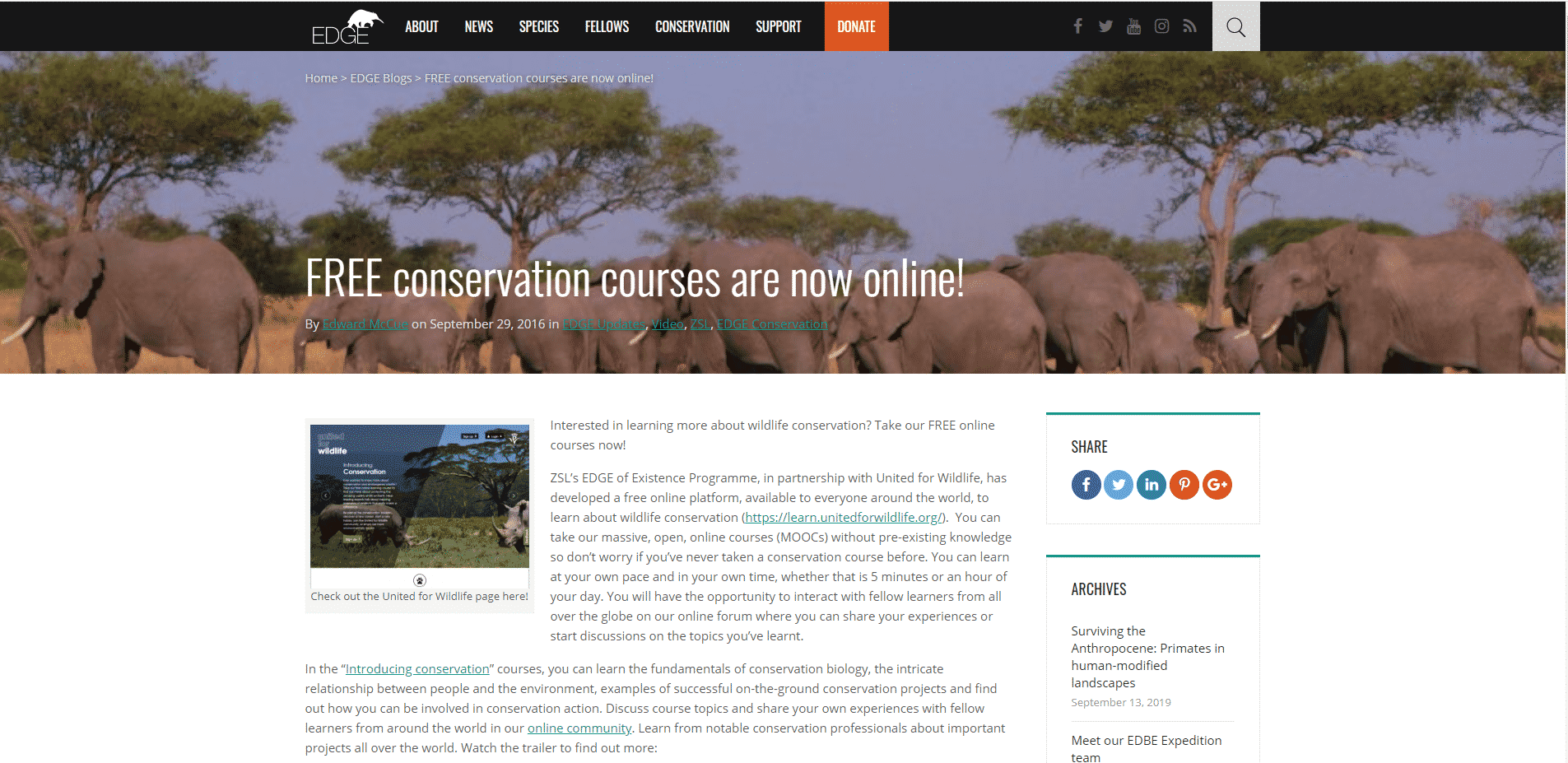 edgeofexistence Learn Conservation Lessons Online