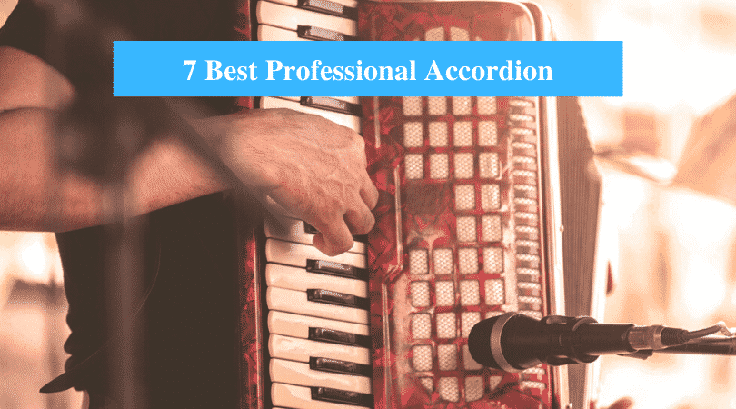 Best Professional Accordion