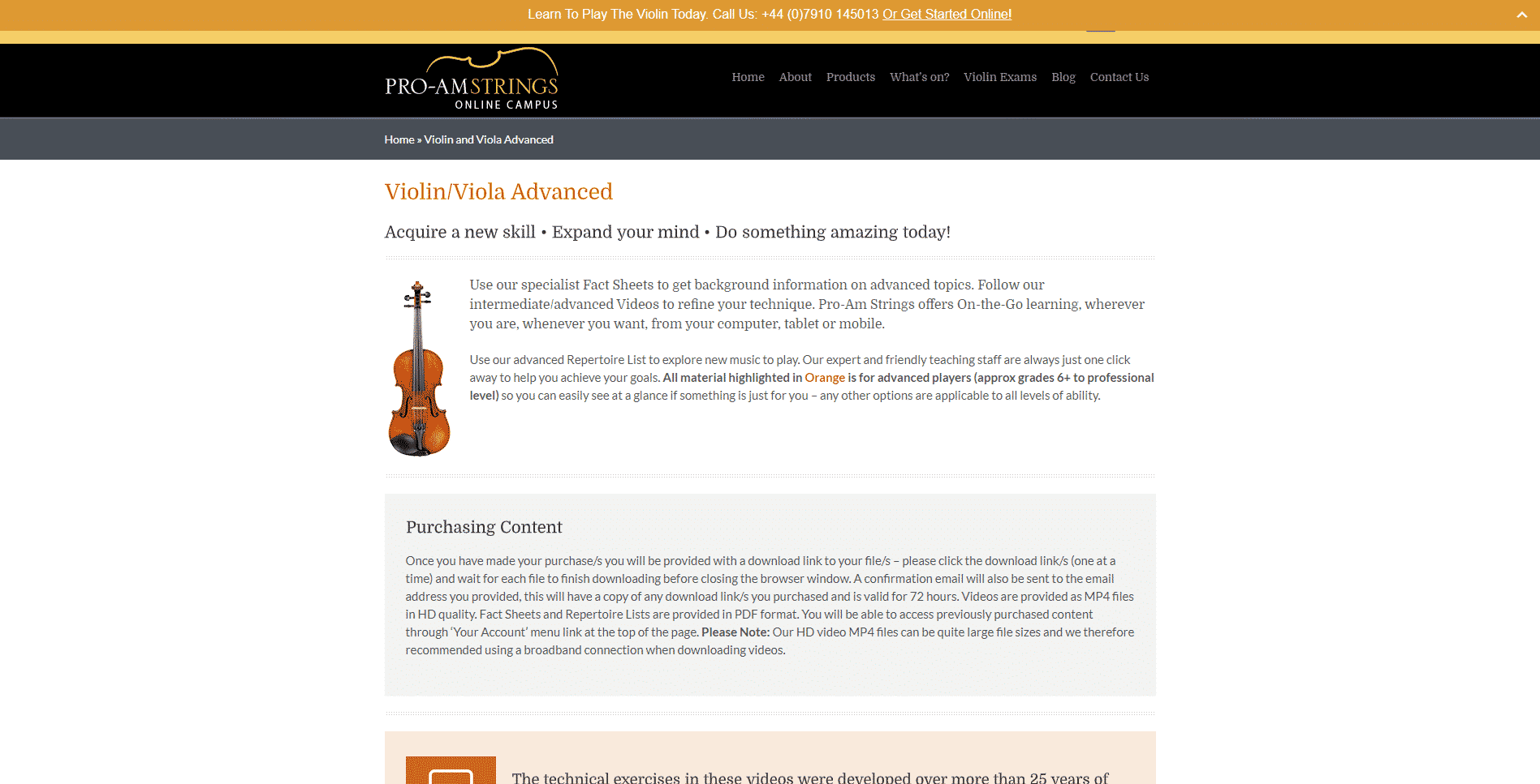 Pro-am Strings Violin Lessons Online