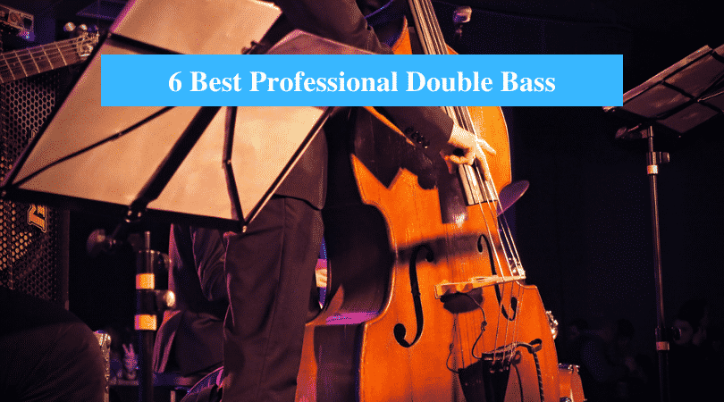 Best Professional Double Bass