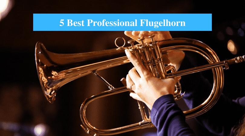 Best Professional Flugelhorn