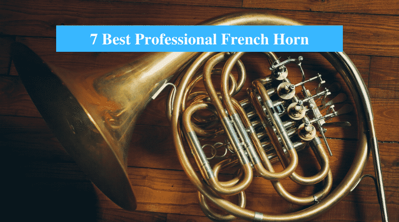 Best Professional French Horn