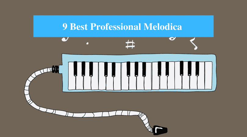 Best Professional Melodica