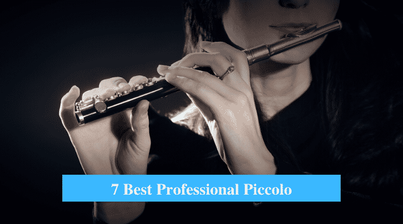 Best Professional Piccolo