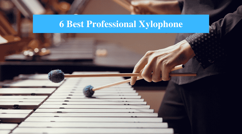 Best Professional Xylophone