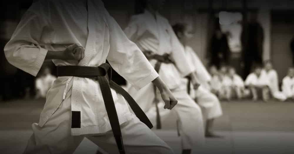 learn karate lessons online