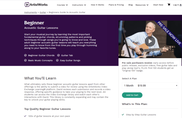 ArtistWork Learn Acoustic Guitar Lessons Online