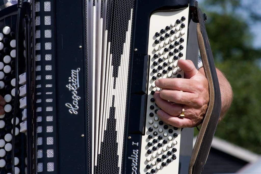 Learn Accordion Lessons Online