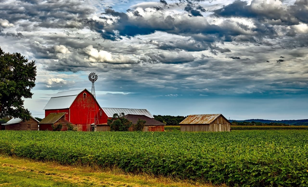Learn Farm Lessons Online