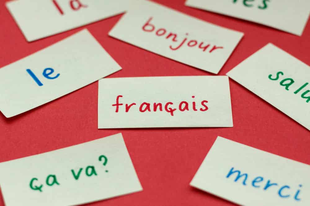 15 Websites to Learn French Lessons Online (Free and Paid) - CMUSE