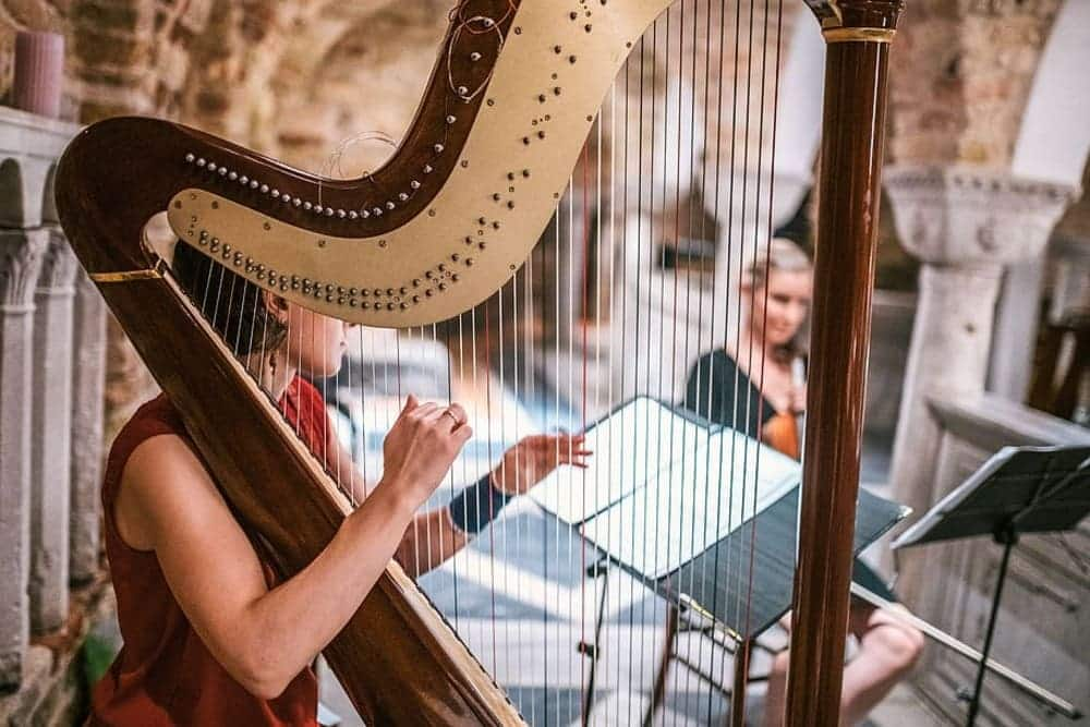 Learn Harp Lessons Online