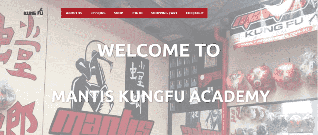 LearnKungFuOnline Learn Kung Fu Lessons Online
