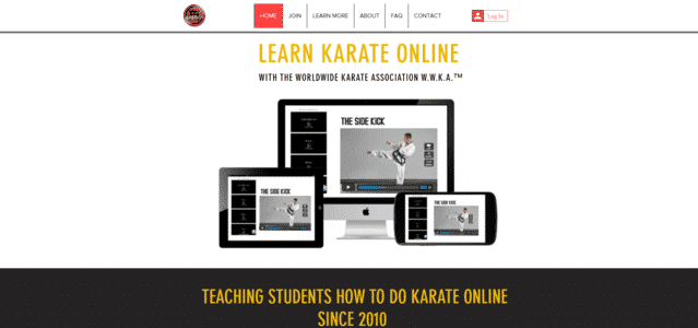 Online Karate Learn Karate Lessons Online