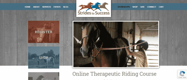 SridesToSuccess Learn Horse Riding Lessons Online