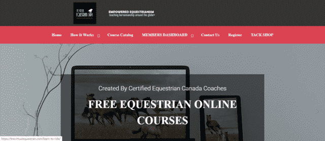 TheVirtualEquestrian Learn Horse Riding Lessons Online