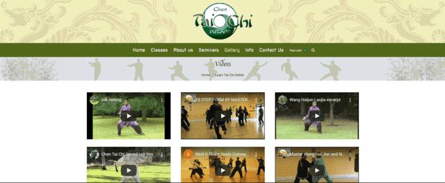 chentaichiireland learn tai chi lessons online