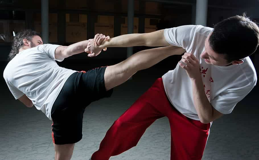 learn martial arts lessons online
