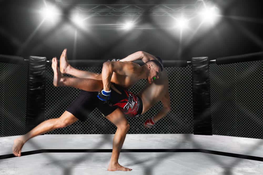 learn mma lessons online